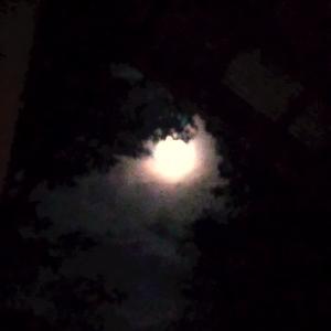 満月と中秋の名月