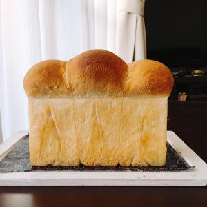 来週の食パン