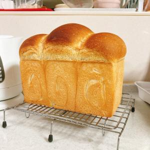 食パンが一枚になってる!