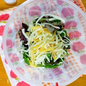 【月曜断食・4週目】6/23(火)鶏のグリルとチーズのサラダ弁当