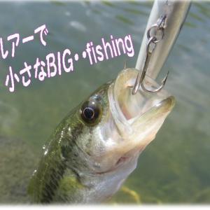 小さなBIGゲームこばっち~🐟プラグとワームで狙う&鯉と鮒(コイとフナ)&着水後の3秒ルール