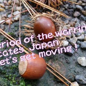 """本能寺の変はここに有り、!いざ出陣!""""Let's get moving !亀山城跡・・・でも謎が多い"""