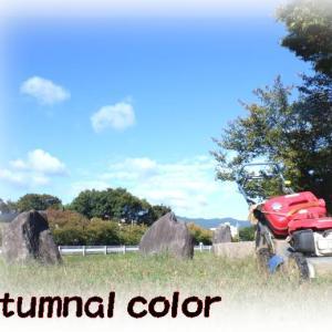 秋の草刈りカメさん・🐢・5ミリで命拾い!autumnal color&コチ握り