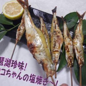 琵琶湖の小さな高級魚🐟ホンモロコ、鮮度が良いので塩焼きチャレンジ~!料理は見た目も隠し味!