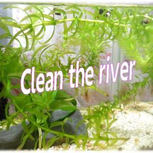 災害級の☂大雨に備えて川の詰まり除去「長靴を履いたカマキリおやじ」Clean the river