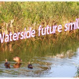 akinoゴミ拾い・💚・Waterside future smileちいさな公園の草刈りボランティア&2回目接種