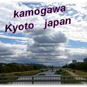 京都で鯉のあらいを食べれる鰻屋さん「京極かねよ」大正開業・・&東映剣会公演まさかの完売御礼