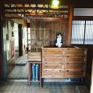 招き猫と新しい下駄箱。