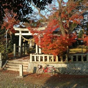 東条八幡神社