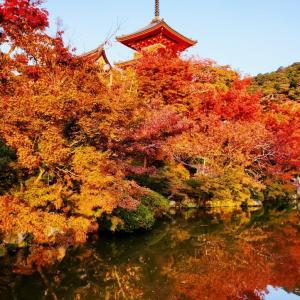 清水寺放生池