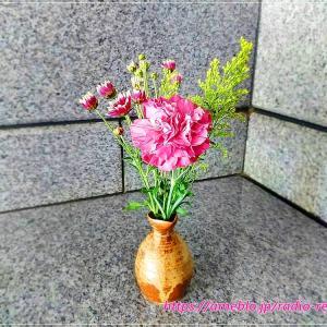 ポストに届く切り花「Bloomee LIFE」初回無料コードあり♪ハロウィンバージョン届きました
