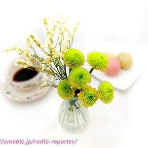 ポストに届く花「ブルーミー」で『花瓶プレゼント+初回無料』W特典実施中♪今だけもれなく!