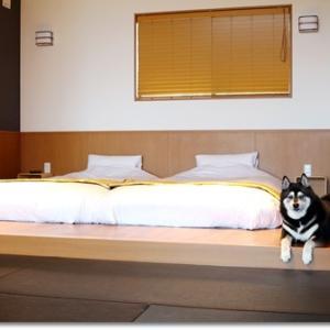 お誕生旅行 in 犬宿 しらくら