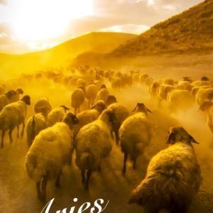4.12 牡羊座の新月 ~勇気を持って新たな扉を開く時~