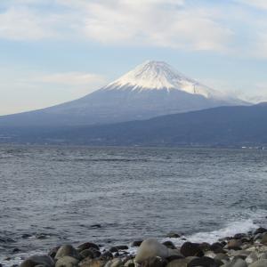 大瀬崎からの富士山