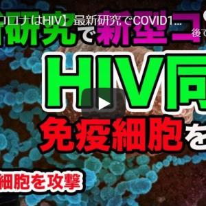 【動画】最新研究 新型コロナ(COVID19)が免疫細胞のT細胞殺し減少させることが判明!