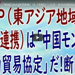 【海外大使館への依頼希望】日本政府は確信犯 売国協定結ばれる(11/14)残された時間はわずか