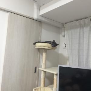 トイレに行く?