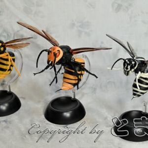 スズメバチ ガチャ