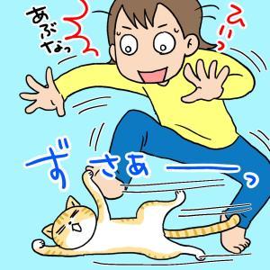 ネコを抱っこ