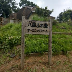 レンタルファーム@採れたて有機野菜