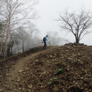 友人を登山に連れて行ってみました。