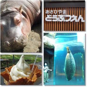 旭川 初めての旭山動物園を探検