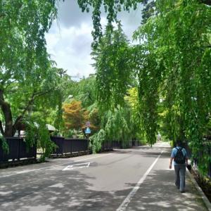 深緑の美しい武家屋敷町を歩く@角館