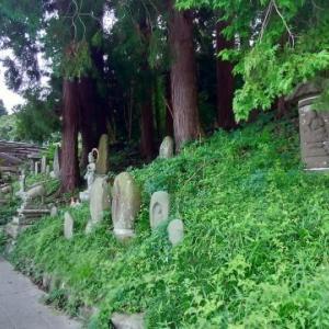 八幡の文殊堂から葛岡城跡まで、四ッ谷用水の跡を訪ねる