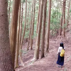 星のや富士☆森林浴<5>