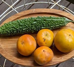 初収穫の柿、まともなゴーヤ