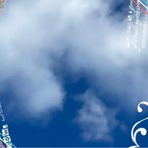 昨日は13時に千羽鶴を持ってお空を見上げながらぷらむちゃんをお見送りしましたぁ(・ω・`寂)