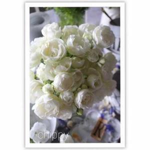 """ホワイトの薔薇""""イタリアンスプレーウィッド"""""""