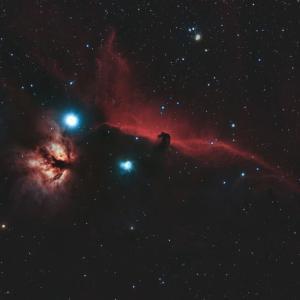 IC434「馬頭星雲」と燃える木「NGC2024」