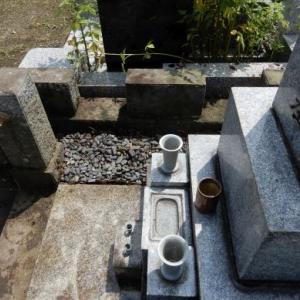 多磨霊園 墓地草刈り