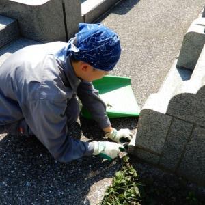 津田山霊園墓地清掃