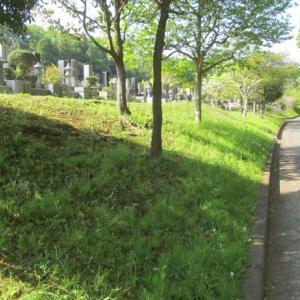 早野聖地公園墓地掃除