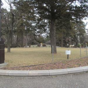 多磨霊園墓掃除代行