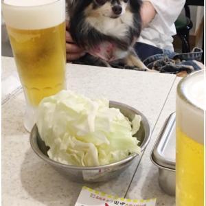 田中で飲みpass♪