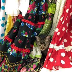フラメンコ衣装の選び方やコーディネートの仕方