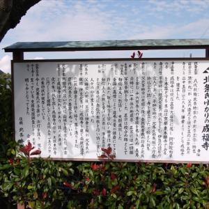 成福寺にて北条時宗・正宗のお墓参り