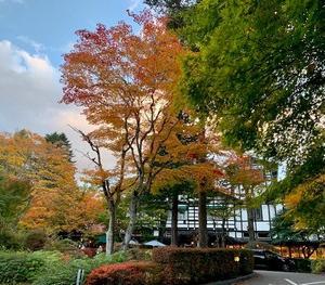 軽井沢の紅葉。
