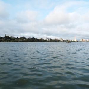 久しぶりの千波湖