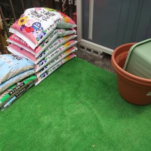 ガーデンを充実させよう!!&オオハシ軍団ヽ(´∀`)ノ