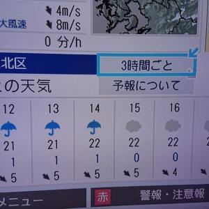 今日の最高気温22度