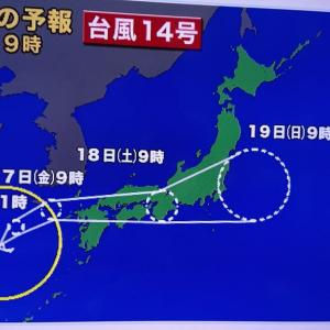 今朝の台風14号