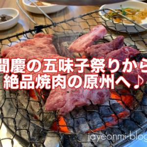 【日々の話】充実の週末♪聞慶の五味子祭りから原州の絶品焼肉へ☆