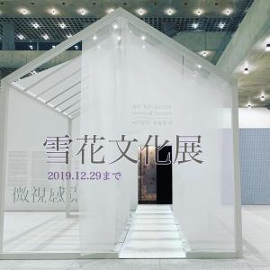 【雪花秀】今年の雪花文化展♪微視感覚:模様の家、MICRO-SENSE House of Pattern☆