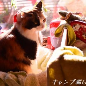 クリスマス明けはなんだかちょびっと・・・&素敵プレゼントありがとですよぉ!