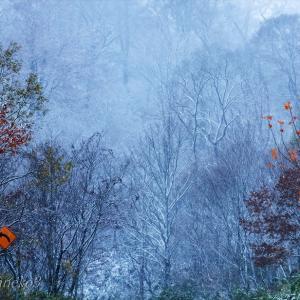 みちのく里山に初雪2